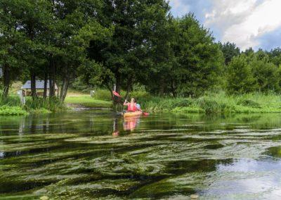 00027Splywy-kajakowe-rzeka-wda